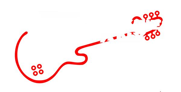 Roaring Sixties Company